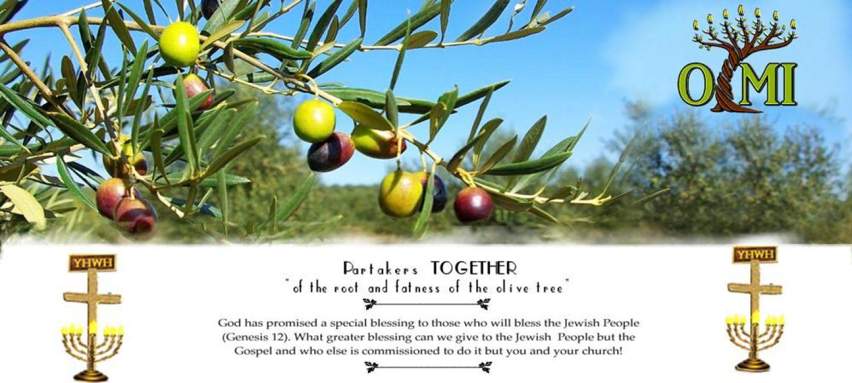 Olive Tree Ministries International